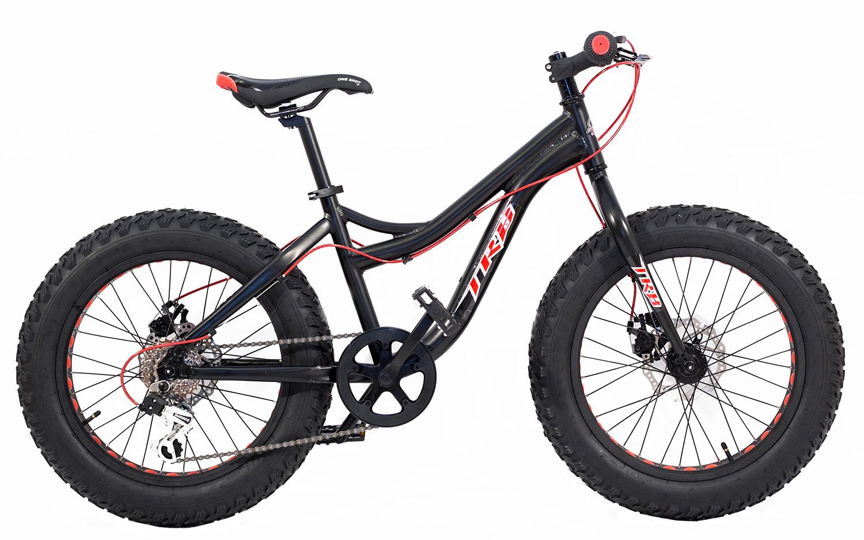 Fat bike 20